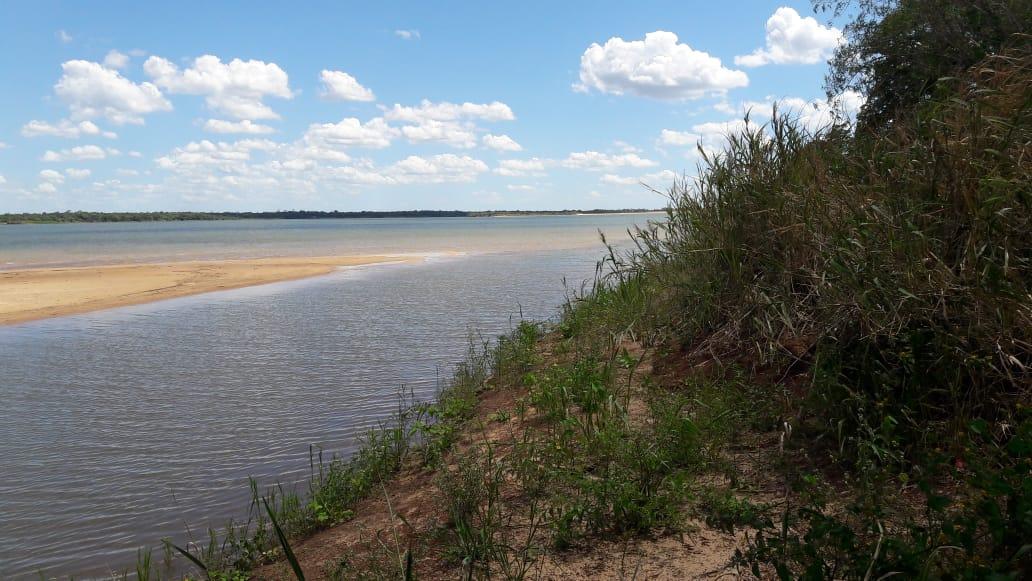 En busca de aves y peces, en una bajante histórica del Paraná